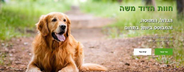 פנסיון כלבים הדוד משה