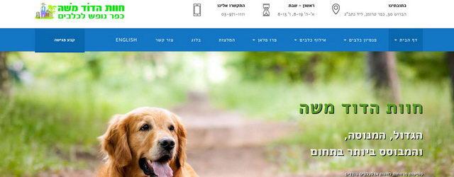 פנסיון כלבים, כפר נופש לכלבים, אילוף כלבים
